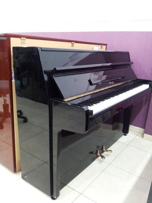 Piano Horugel gambar 3