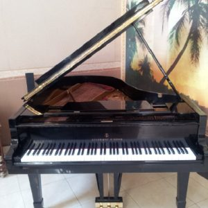 Piano Steinway A