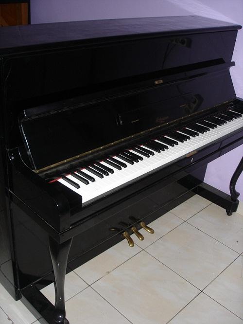 Piano Hofmann