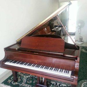 Piano Steinway O