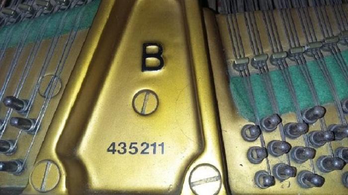 piano steinway B gambar 5
