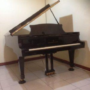 Piano Steinway B (3)