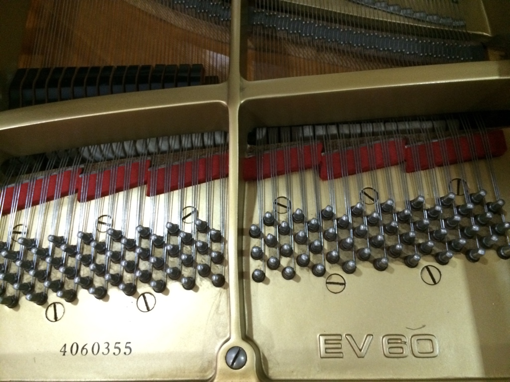 Grand Piano Everett Gambar 4