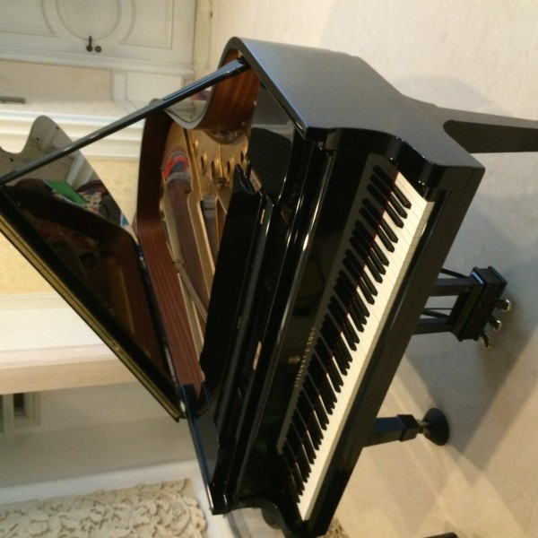 Piano Steinway tipe B - Immaculate