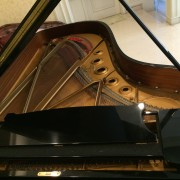 Piano Steinway Type B - Immaculate Gambar 2